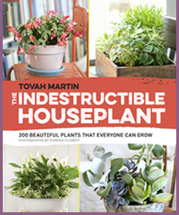 Tovah Martin Horticulturalist Author Freelance Writer Pbs